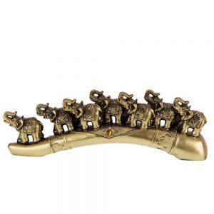 """Семейство слончета на """"златен"""" рог"""